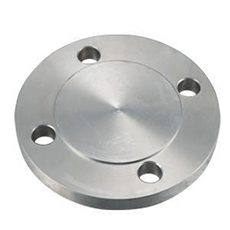 Butt-welding Stainless Steel Blind Flange-Walmi